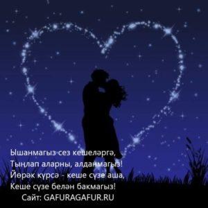 Звёздная ночь,влюблённые целуются
